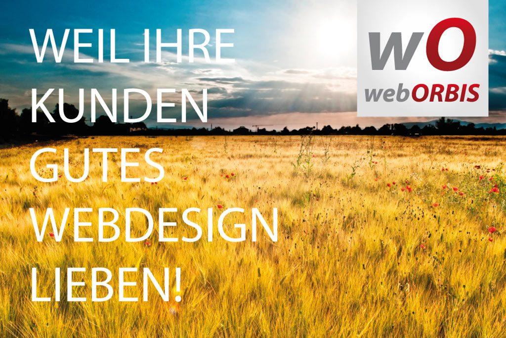 Webdesign Pleinfeld